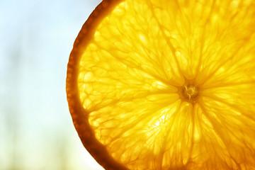 Wall Mural - Slice of citrus fruit, closeup