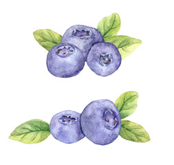 Blueberry - blue berry berries with leaves. Watercolor