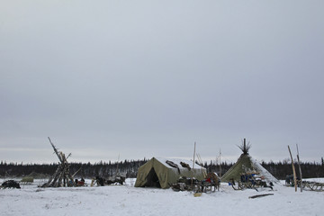 A general view of a reindeer breeders' settlement in the Tundra region, 50 km (31 miles) from the north Russian town of Naryan-Mar
