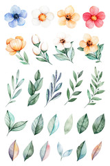 Handpainted watercolor flowers,leaves.25 lovely clipart of roses,leaves,branches and flowers.Can be used for your project,greeting cards,wedding,Birthday cards,bouquets,wreaths,invitations etc
