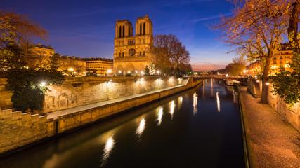 Notre Dame de Paris cathedral on Ile de La Cite at dawn with the Seine River. Daybreak in the 4th Arrondissement, Paris, France Wall mural