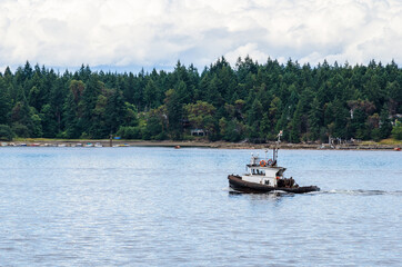Lonely Small Tug Boat with a Wooded Shore in Background. Nanaimo Harbor, Canada.
