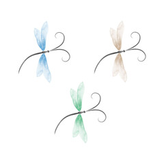 Dragonfly vector illustration