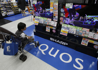 Boy in a stroller looks at a cartoon shown on Sharp Corp's Aquos LCD TVs displayed at an electronic store in Tokyo