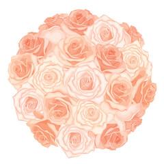 Vector illustration of realistic, detailed bouquet of roses in peach colour on white background. Illustration for design.