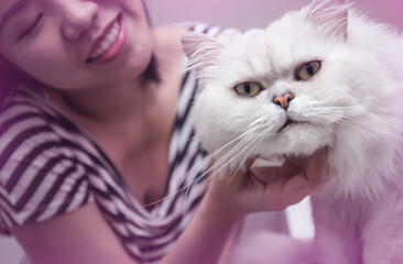Asian woman with her pet persian cat, scratching cat's chin with love