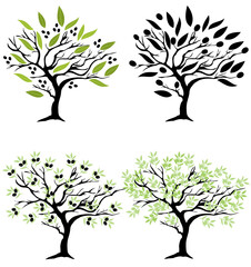 Vector Olive Trees