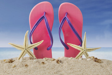 Pink flip flops and starfishes on beach