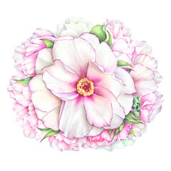Watercolor illustration bunch of pink peony flowers with green leaves