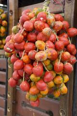 Chontaduro, tropical fruit of america