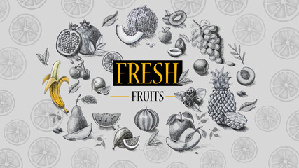 Organic food. Fresh fruits. Pencil drawing.