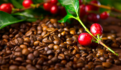 Poster Café en grains Coffee. Real coffee plant with red beans on roasted coffee beans background