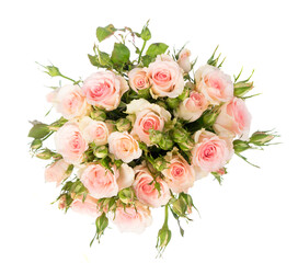 Bouquet of pink blooming fresh roses with buds top view isolated on white background