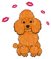 Poodle, dog, puppy, cartoon, friend, pet, animal, hair, nose, breed, grace, funny, orange, sit, pink, many, fly, love, kiss, lipstick,