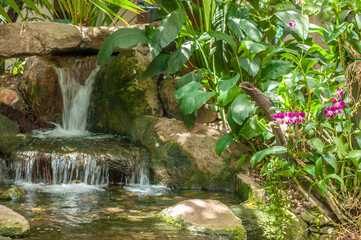Beautiful small water fall and orchid flowers with green plant, home decoration