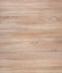Oak high resolution texture