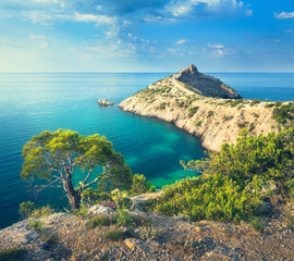 Wall Mural - Summer landscape in mountains on seashore. Amazing view on the green tree, mountains, sea with turquoise water and colorful blue sky at sunrise. Travel in Europe. Nature background. Seascape