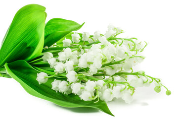 Fotobehang Lelietje van dalen lily of the valley flowers on white background. NAME LAT.Postcard, cover, card
