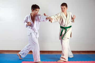 Two boys demonstrate martial arts working together