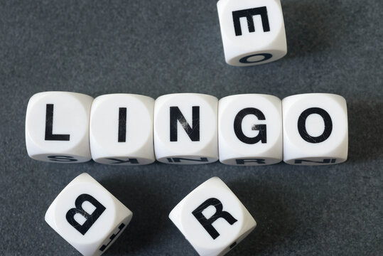 word lingo on toy cubes