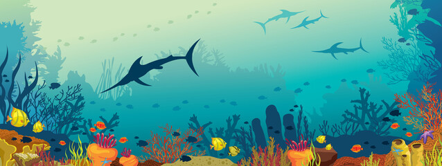 Underwater marine life - coral reef and marlin fish.