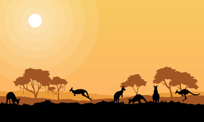 Beauty kangaroo on park scenery silhouettes