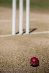 High angle view of cricket ball on field