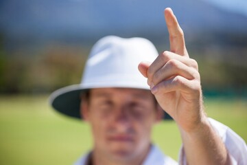 Cricket umpire signaling out sign during match