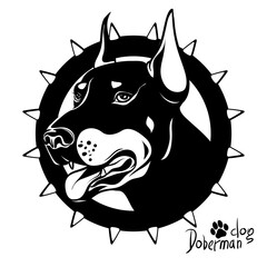 Graphic vector drawing of a dog head, service breed Doberman, fighting dog