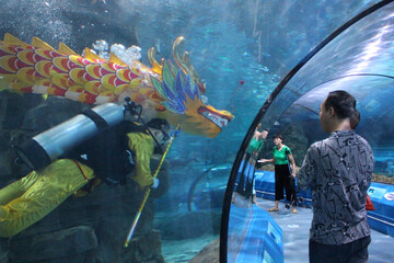 Visitors watch as a diver performs underwater dragon dance ahead of the Dragon Boat Festival at an aquarium in Changchun