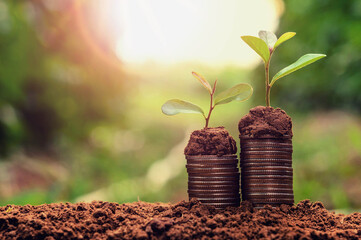 concept coins in soil with young plant for saving money