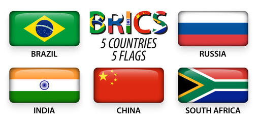 BRICS . association of 5 countries ( brazil . russia . india . china . south africa )