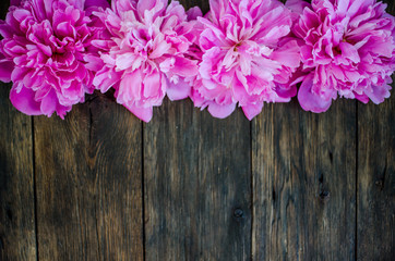 Floral frame with pink peonies flowers on wood background. Selective focus, place for text, top view