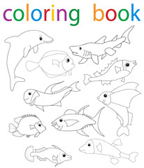 book coloring cartoon fish collection character
