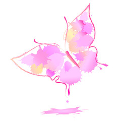 beautiful pink butterfly watercolor,isolated on a white
