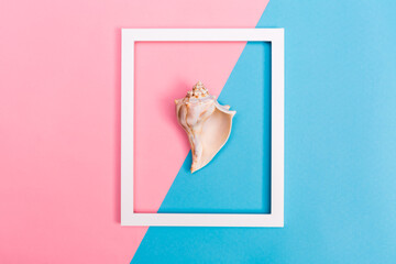 Seashell and frame on a bright background