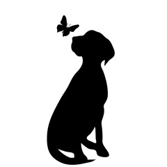 Vector silhouette of dog with butterfly on white background.