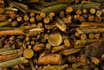 Деревянная текстура из кучи сосновых дров