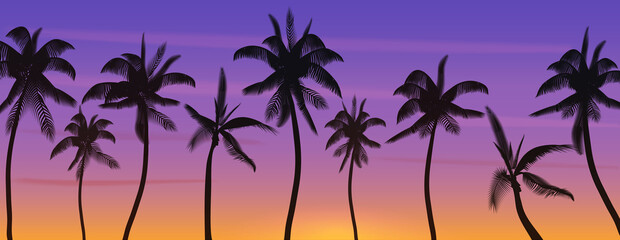 Palm coconut trees Silhouette at sunset or sunrise. Realistic banner vector illustration. Beach paradise.