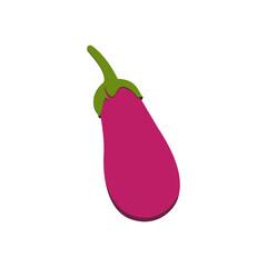 Vegetable organic food cartoon eggplant aubergine isolated on white background vector illustration