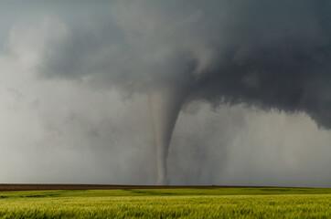 Gorgeous Tornado