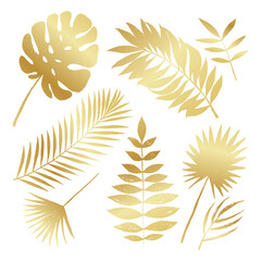 Summer golden silhouette tropical palm tree leaves elements. Vector grunge design for cards, web, backgrounds and natural product.