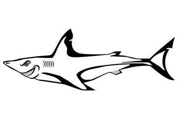 Cartoon shark isolated on the white background.