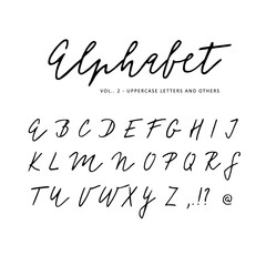 Hand drawn vector alphabet. Signature script brush font. Isolated letters written with marker, ink. Calligraphy, lettering.
