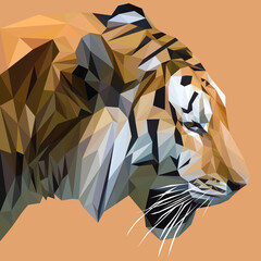 Tiger low poly design. Triangle vector illustration.