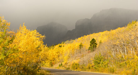 Wall Mural - Fall Color Autumn Foliage Route 3 Altyn Peak Thunderstorm