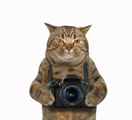 The cat photographer is holding a photo camera. White background.