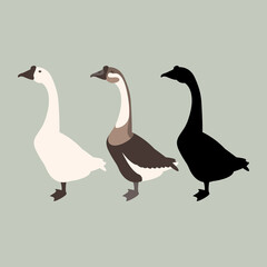 goose vector illustration style Flat set silhouette