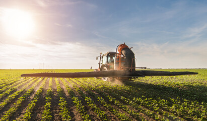 Wall Mural - Tractor spraying soybean field at spring