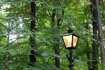 Vintage street light lamp